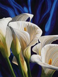 Cala Lilies#2